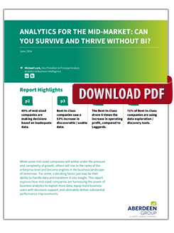 Analytics For The Mid-Market: Can You Survive And Thrive Without BI?